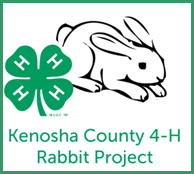 rabbit project logo