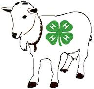 goat with 4-H logo
